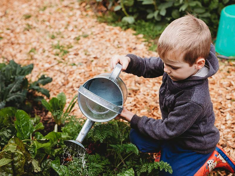 Eyre Room - outdoor play - watering garden